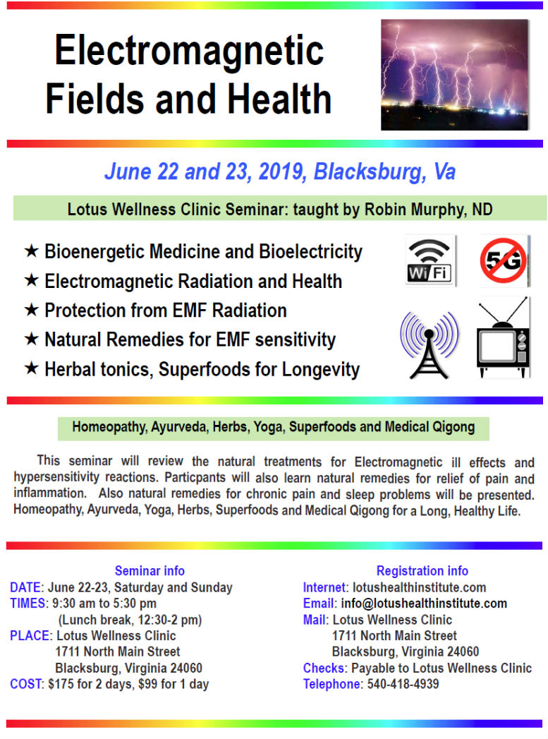 Electromagnetic Fields and Health Seminar